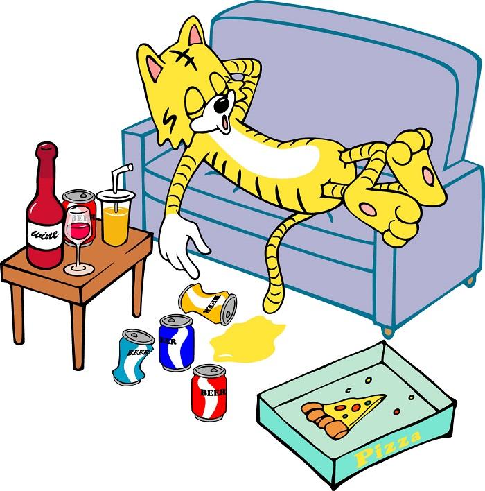 ソファーでゴロゴロ